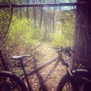 Gears n Cheers Wersells Bike Shop