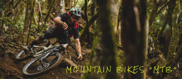 Wersells Bike Shop Mountain Bike MTB