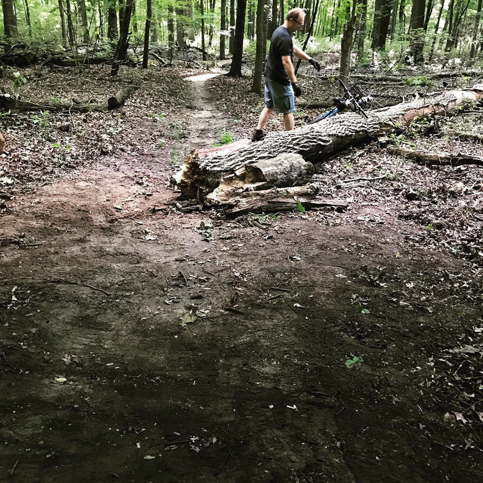 Wersell's Trail Maintenance